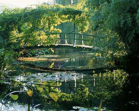 Elizabeth Murray's photo of Monet's bridge