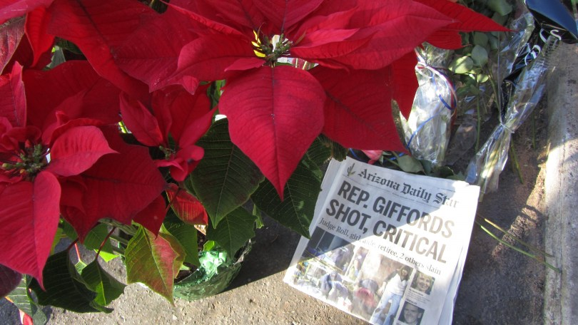 Poinsettia and newspaper headline Tucson 1/10/12: Photo--Pamela Burke