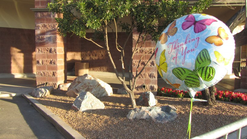 Safeway Memorial in Tucson-1/8/12--Photo: Pamela Burke