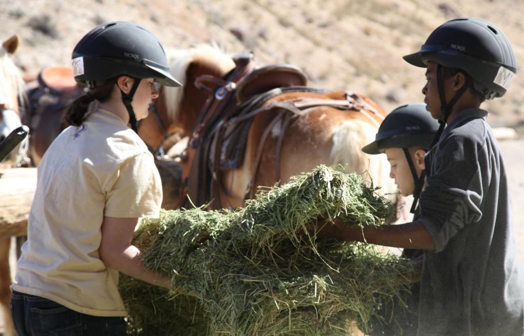 Kids feeding horses at WHY Ranch/Photo: Adrian Leon