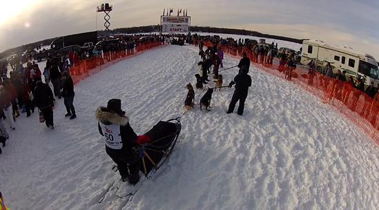 Cindy Abbott at the start of Iditarod 2013