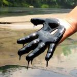 Ann Curry Reports: Oil Demand Threatens Ecuador's Rainforest