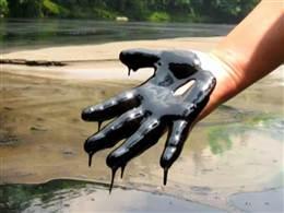 Ann Curry Reports: Oil Demand Threatens Ecuador's Rainforest