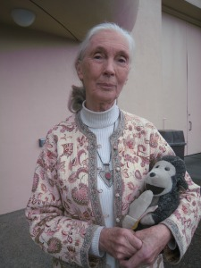 Jane Goodall/Photo: Pam Burke