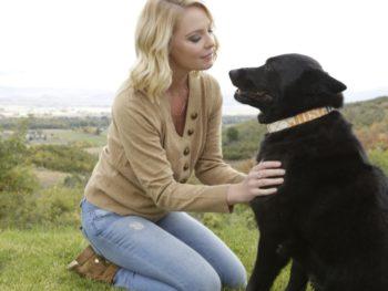 Katherine Heigl's Foundation All About Animals--Jason Debus Heigl Foundation