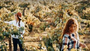 McBride Sisters in Wine Business/cbsnews.com